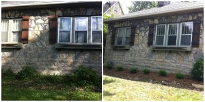 Weeds removed, shrubs installed, weed fabric, and pine straw create low maintenance.