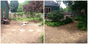 Before Transformation, many weeds and liriope (monkey grass) to move!