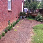 Step 2 – Landscaping on a Cheap Budget Ideas