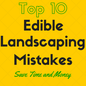 Top 10 Edible Landscaping Mistakes