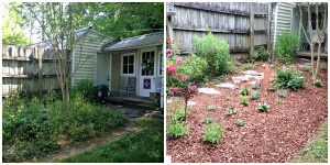Shady perennial garden started from the weeds!