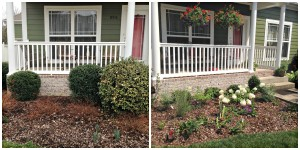 Perennials and flowering shrubs spruce up this nice home.